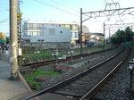 DSC00115.jpg