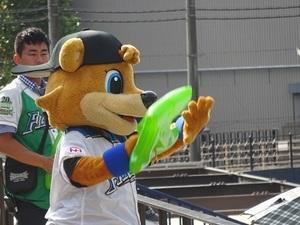 鎌スタ2018