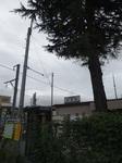 地元の駅2013年